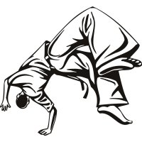 Martial Arts Somersault