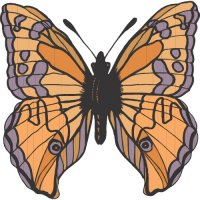 Butterfly Light Iron On Stickers (Heat Transfers) version 11