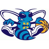 New Orleans Hornets Alternate Logo  Light Iron-on Stickers (Heat Transfers) version 2