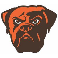 Cleveland Browns Alternate Logo Logo  Light Iron-on Stickers (Heat Transfers) version 1