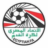 Egypt Football Confederation Light Iron-on Stickers (Heat Transfers)