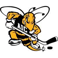 AIC Yellow Jackets 2009-Pres Alternate Logo Light Iron-on Stickers (Heat Transfers)