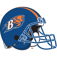 Bucknell Bison 2002-Pres Helmet Logo Light Iron-on Stickers (Heat Transfers)