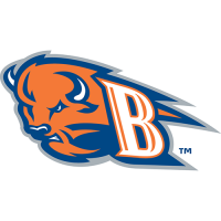 Bucknell Bison 24422002-Pres Alternate Logo Light Iron-on Stickers (Heat Transfers)